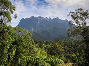 Blick auf das Kinabalu-Massiv