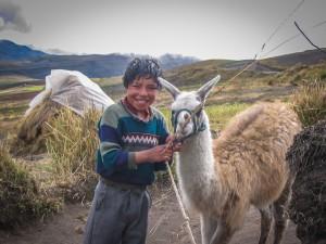 Ohne Lama geht nichts