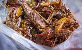 Snack thailandaise en detail
