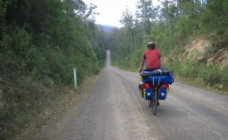 Wielangta Forest Drive